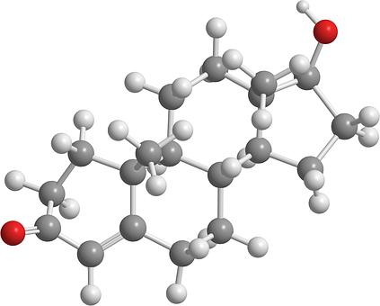 Natural Testosterone boostingFoods.
